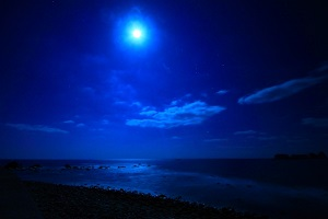 night_s