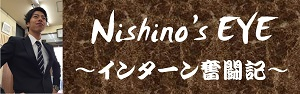 nishinos-eye_banner_s
